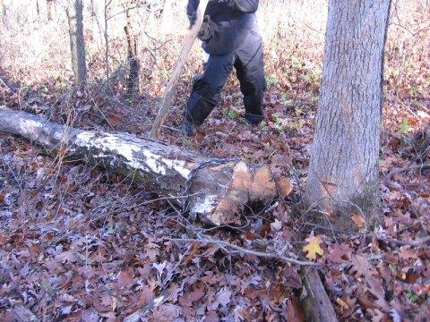 Adjusting Log