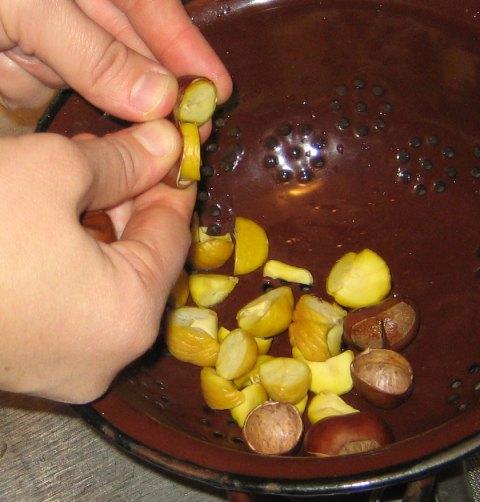 chestnutscutclose