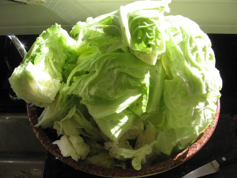 choppedcabbage