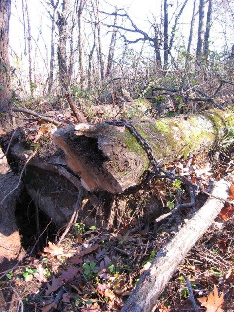 Log and Chain