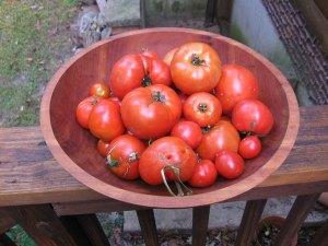 tomatoes4ketchup